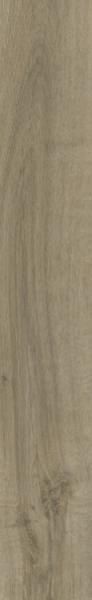 24935 Dub Malovaný
