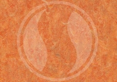 Oranžová (4213-465)