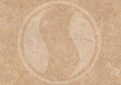Béžová (4213-470)